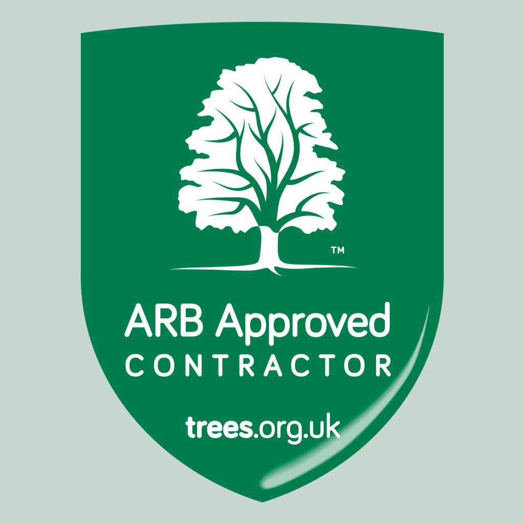 Arboricultural Association ARB Approved Contractor rebrand