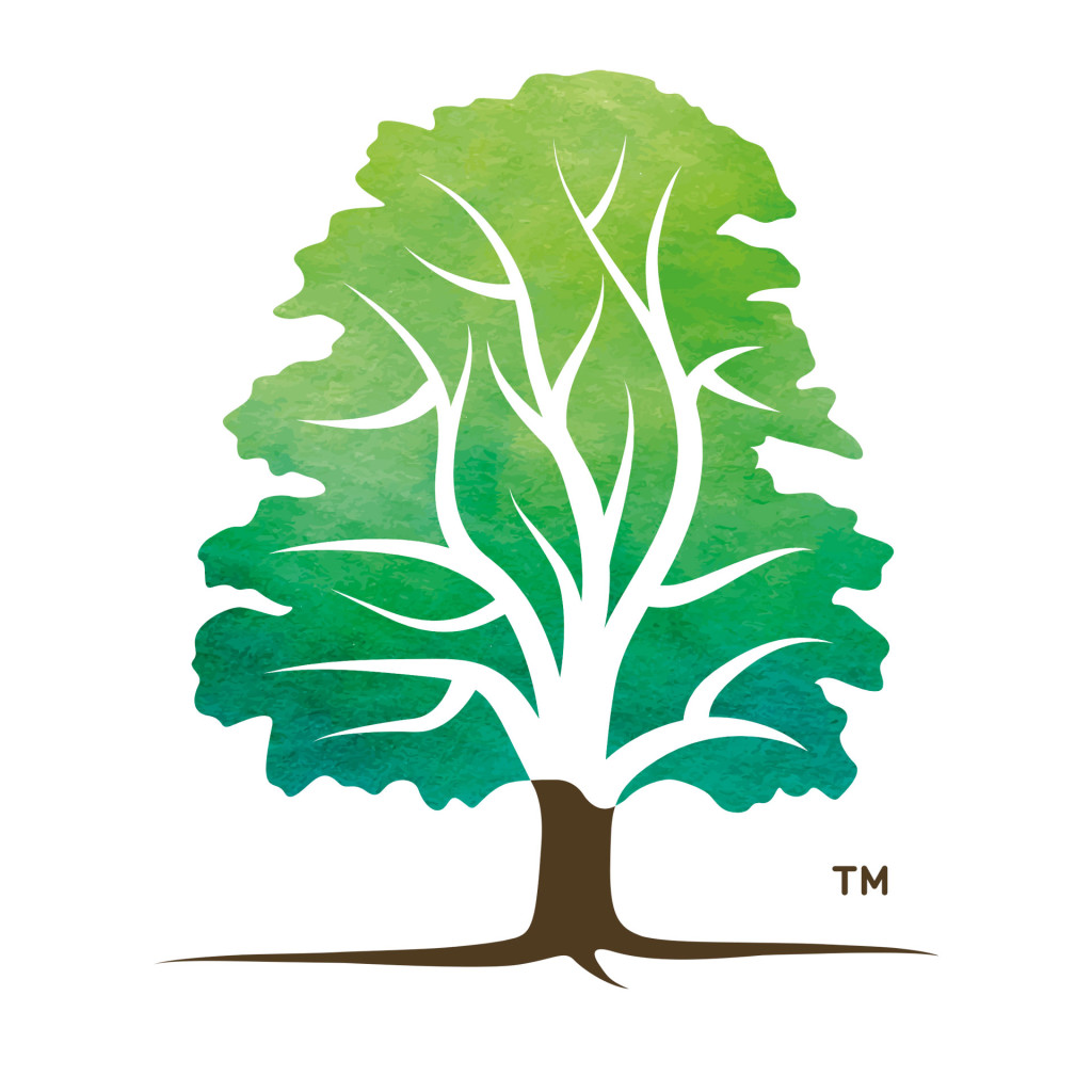 The Arboricultural Association rebrand