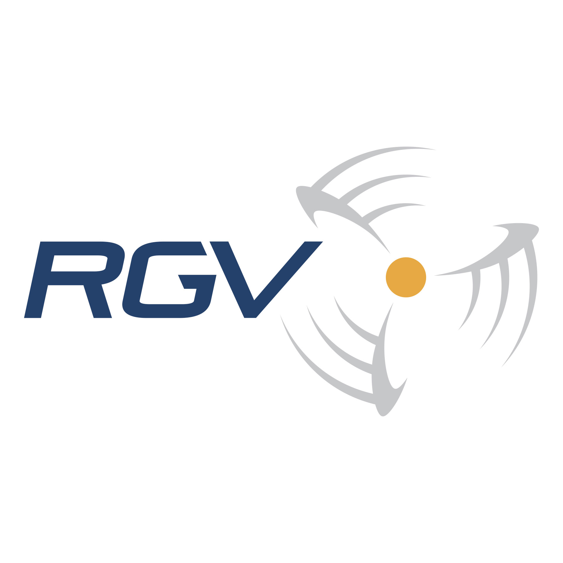 RGV Aviation logo